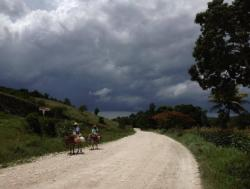 Dirt road with two donkeys being ridden