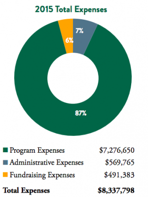 Pie chart showing 2015 expenses