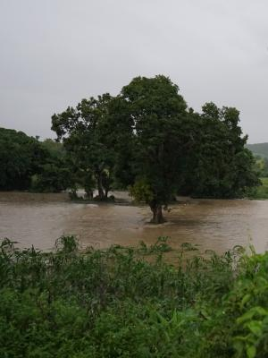 Flooding May 2017
